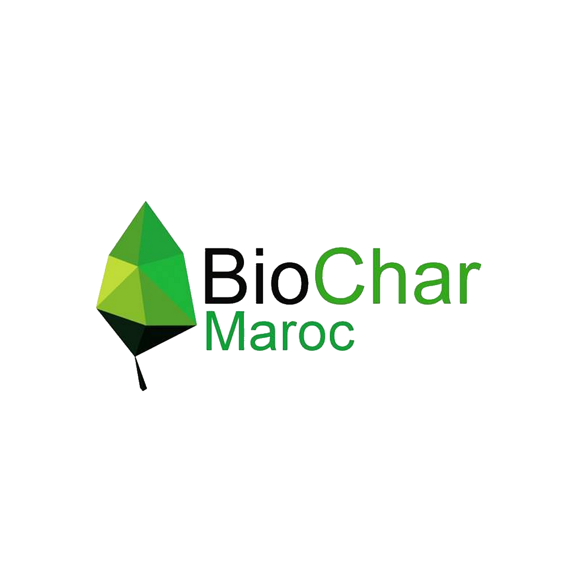 BioChar-Maroc-start-up.ma